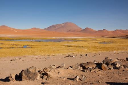 CHILE 2015-6623