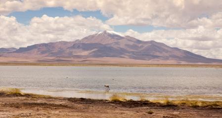 CHILE 2015-6679